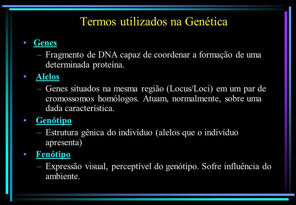 Termos utilizados na Genética