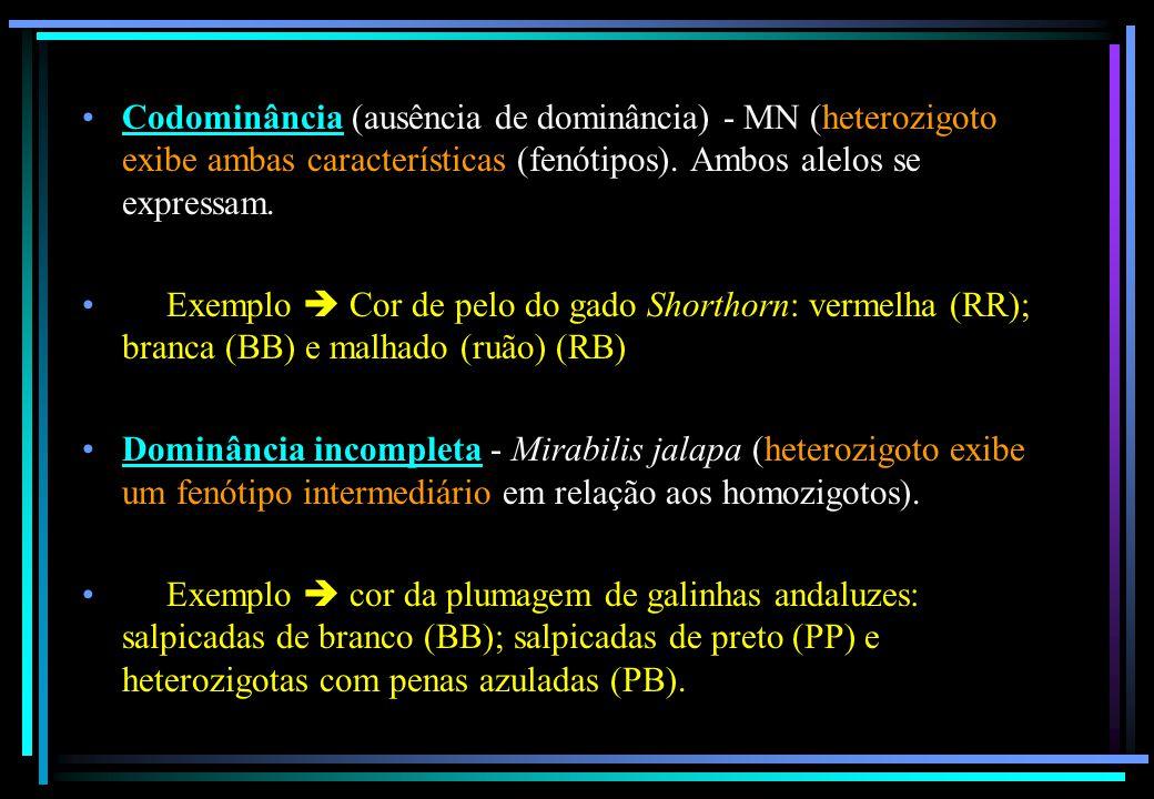 Codominância (ausência de dominância) - MN (heterozigoto exibe ambas características (fenótipos). Ambos alelos se expressam.