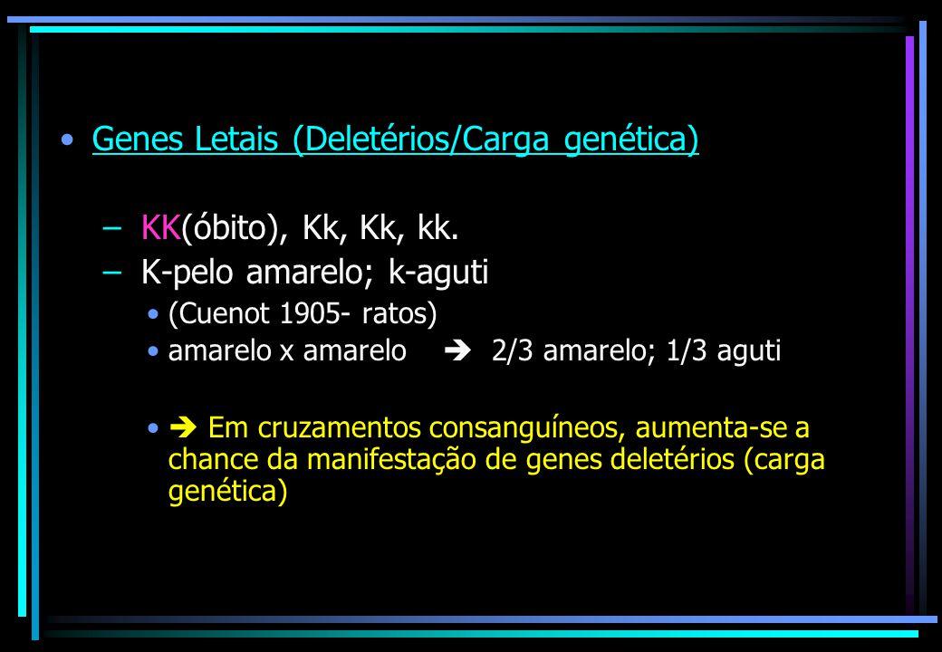 Genes Letais (Deletérios/Carga genética) KK(óbito), Kk, Kk, kk.