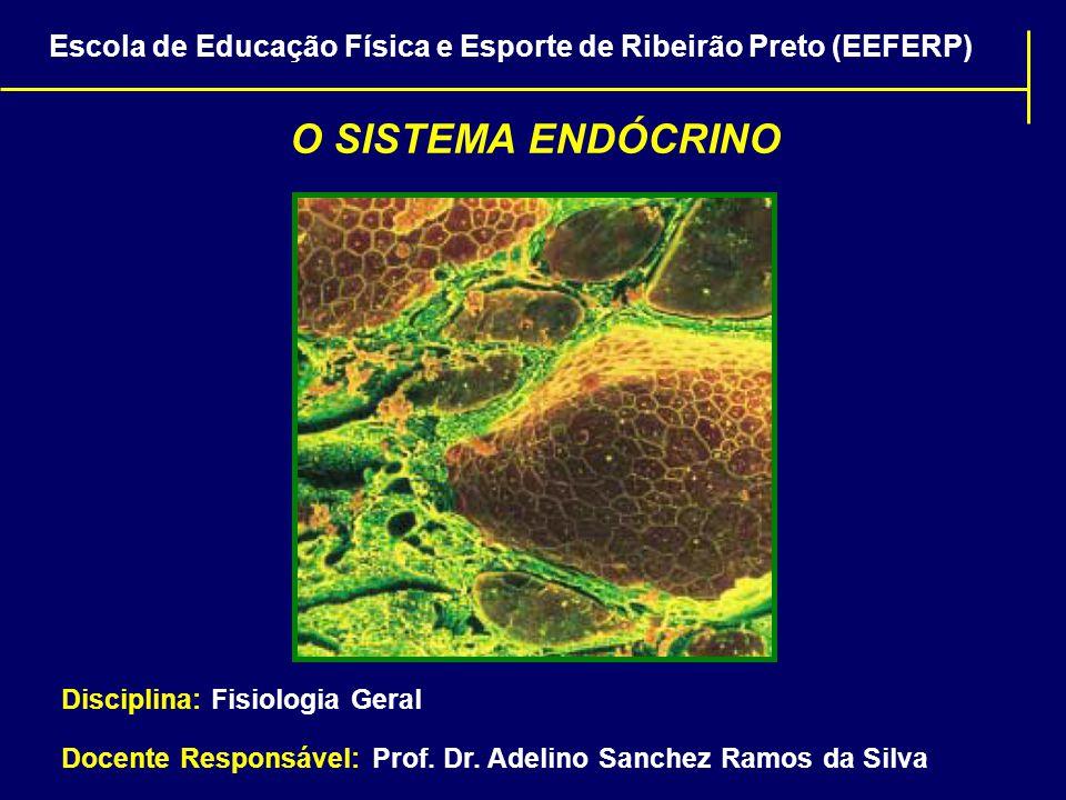 Escola de Educação Física e Esporte de Ribeirão Preto (EEFERP)