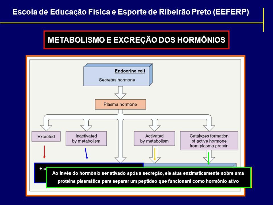METABOLISMO E EXCREÇÃO DOS HORMÔNIOS