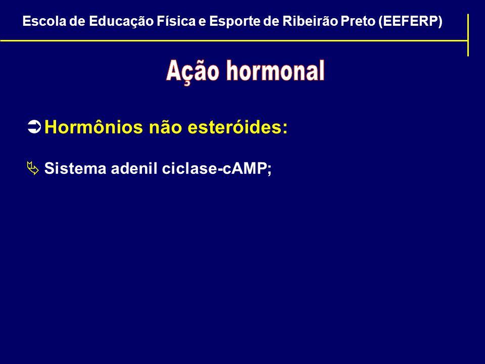 Hormônios não esteróides: