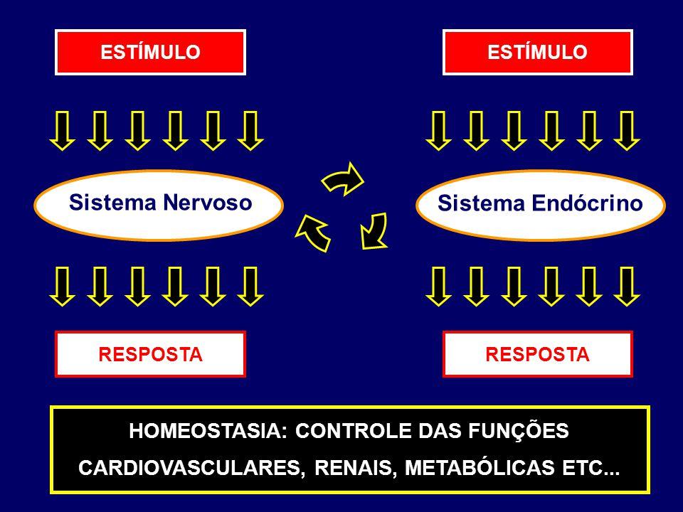 Sistema Nervoso Sistema Endócrino