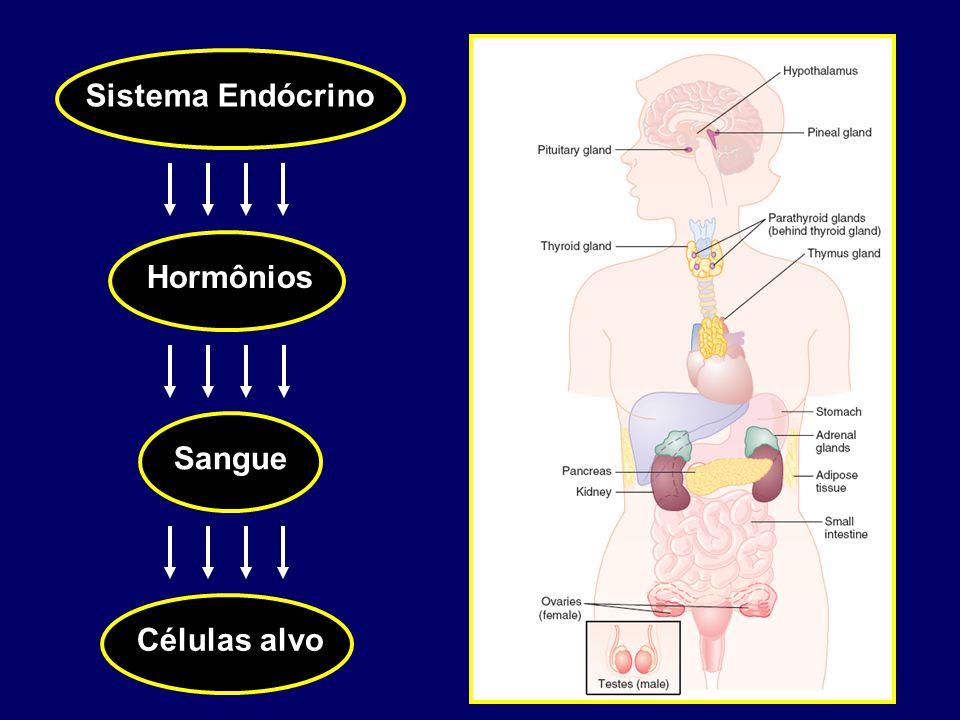 Sistema Endócrino Hormônios Sangue Células alvo