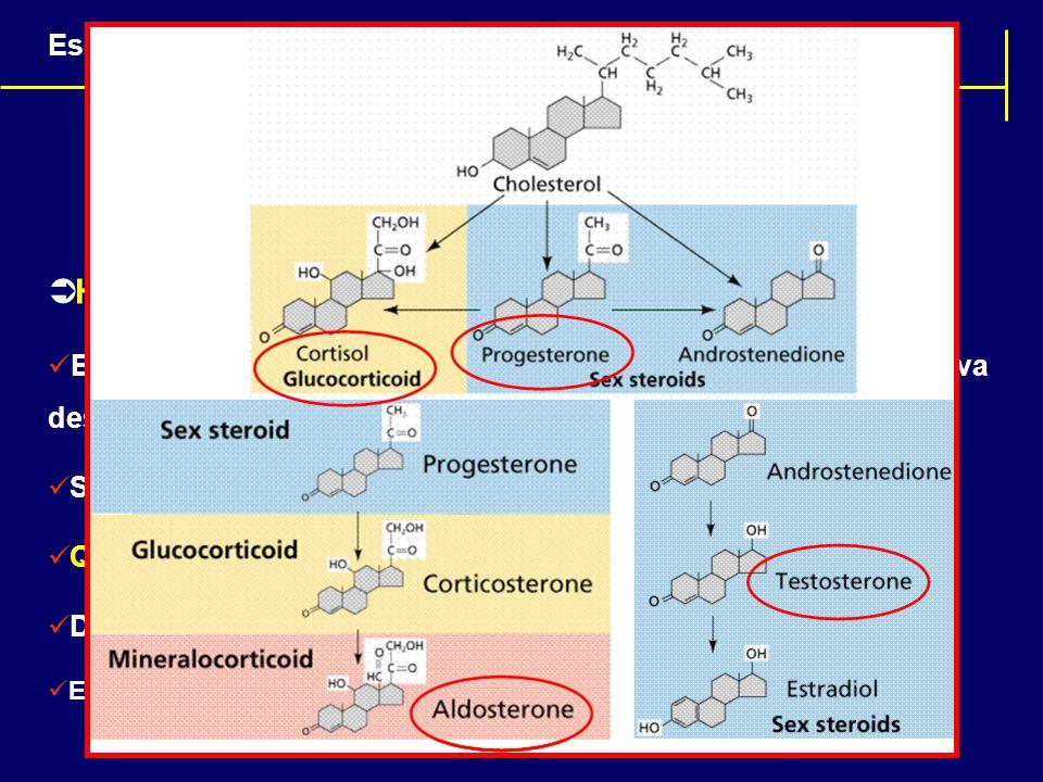 Hormônios: Classificação química
