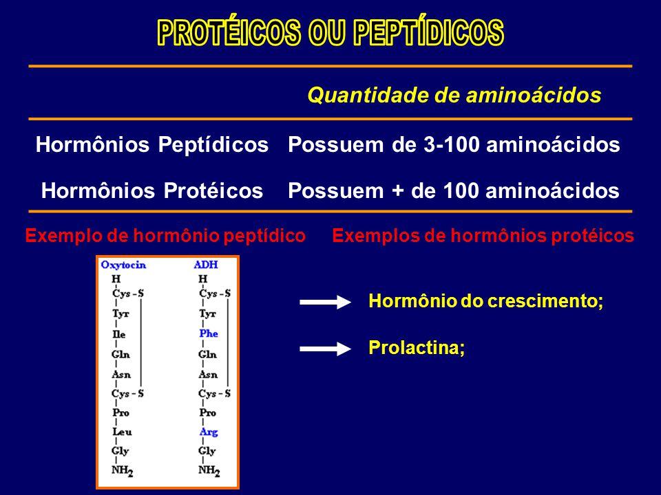 PROTÉICOS OU PEPTÍDICOS Quantidade de aminoácidos Hormônios Peptídicos