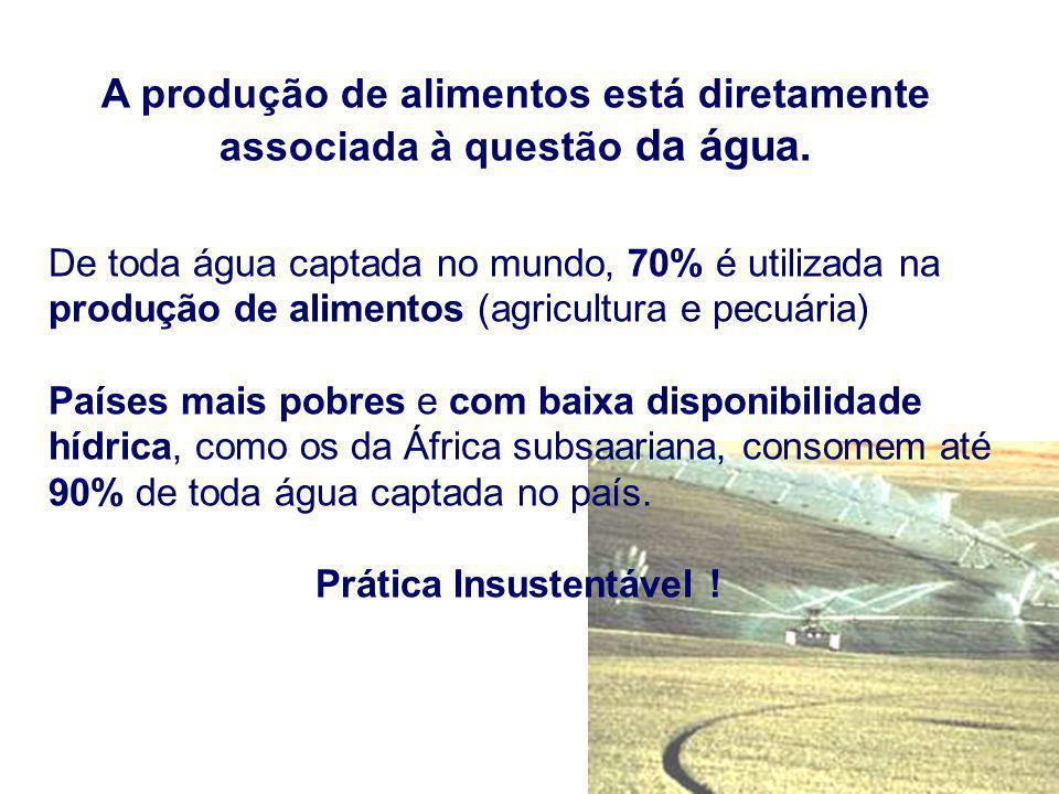 A produção de alimentos está diretamente associada à questão da água.
