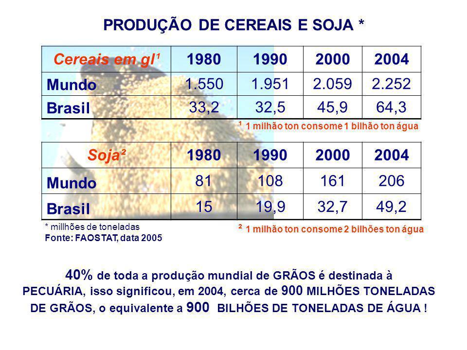 PRODUÇÃO DE CEREAIS E SOJA * 1980 1990 2000 2004 Soja²