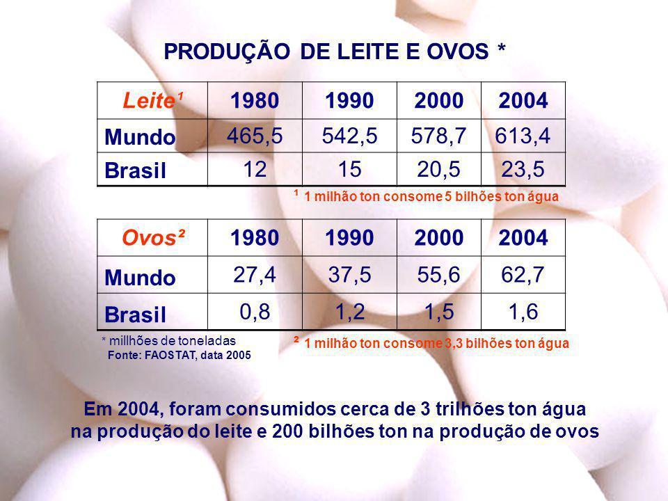 PRODUÇÃO DE LEITE E OVOS * 1980 1990 2000 2004 Ovos²