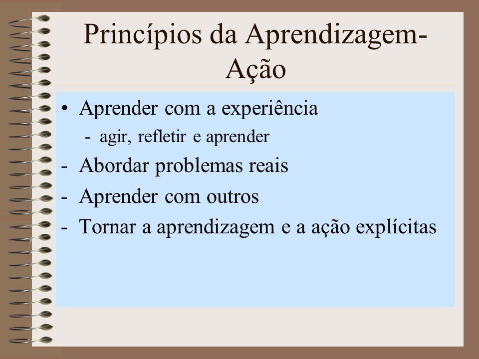 Princípios da Aprendizagem-Ação