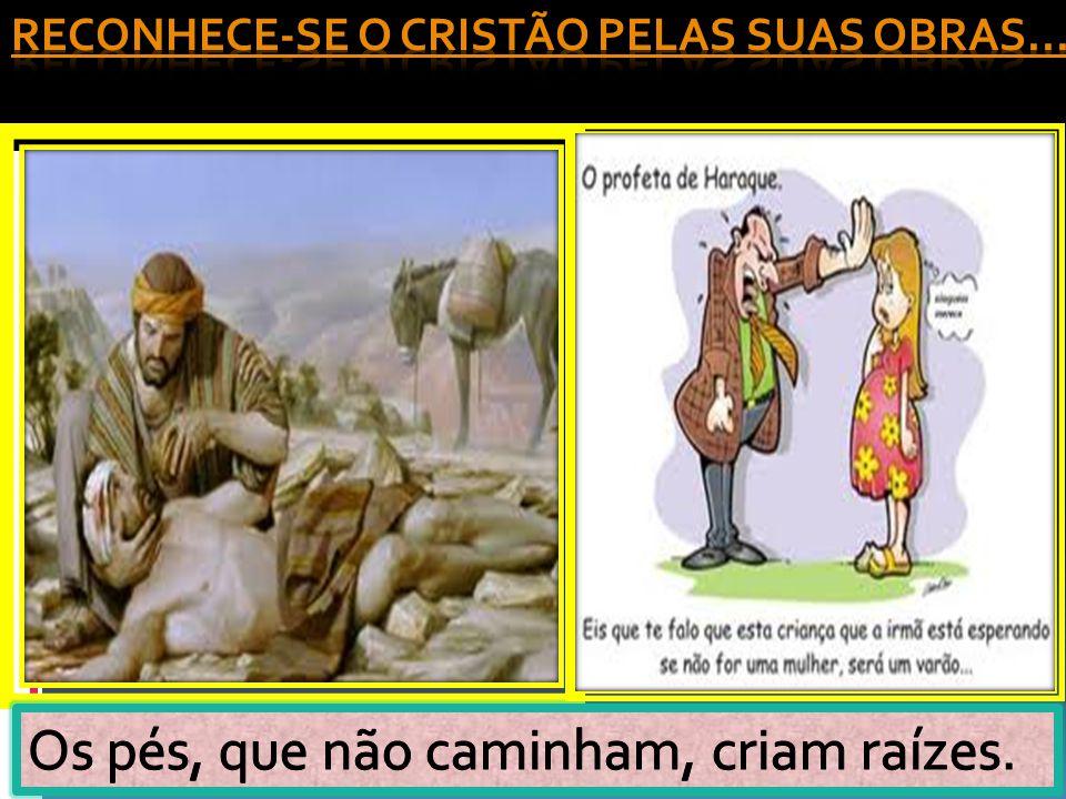 Reconhece-se o cristão pelas suas obras...