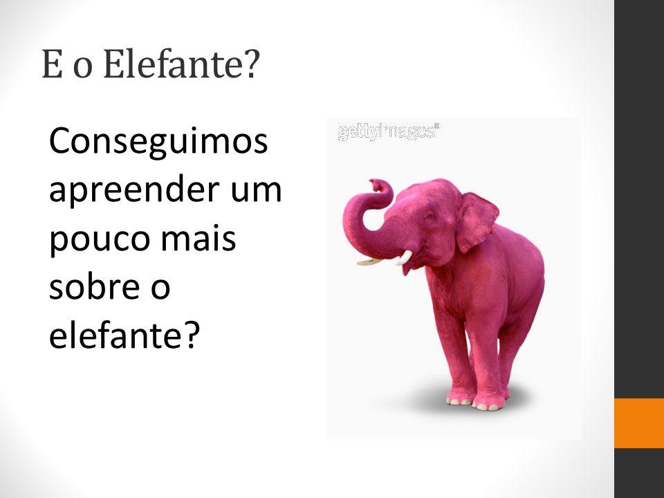 E o Elefante Conseguimos apreender um pouco mais sobre o elefante