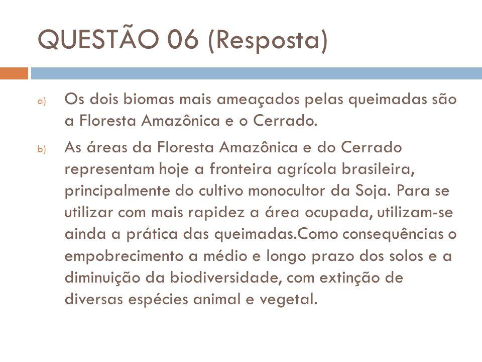 QUESTÃO 06 (Resposta) Os dois biomas mais ameaçados pelas queimadas são a Floresta Amazônica e o Cerrado.