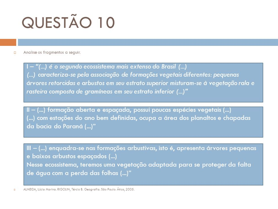 QUESTÃO 10 Analise os fragmentos a seguir. ALMEIDA, Lúcia Marina. RIGOLIN, Tércio B. Geografia. São Paulo: Ática, 2005.