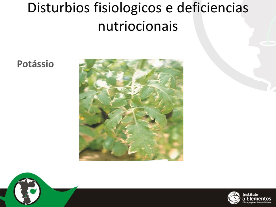 Disturbios fisiologicos e deficiencias nutriocionais