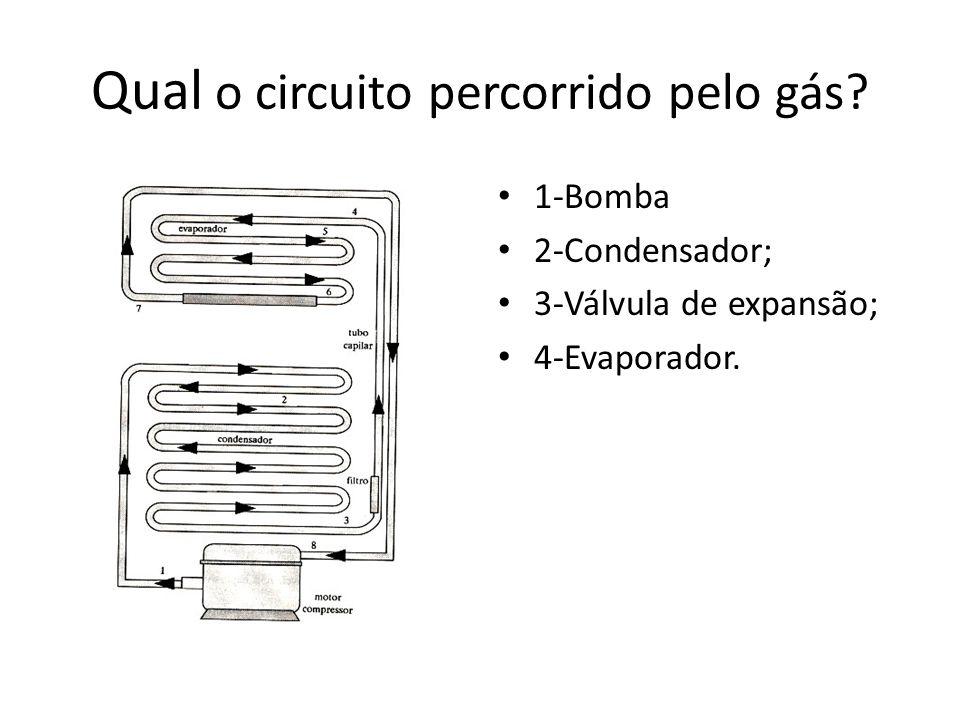 Qual o circuito percorrido pelo gás