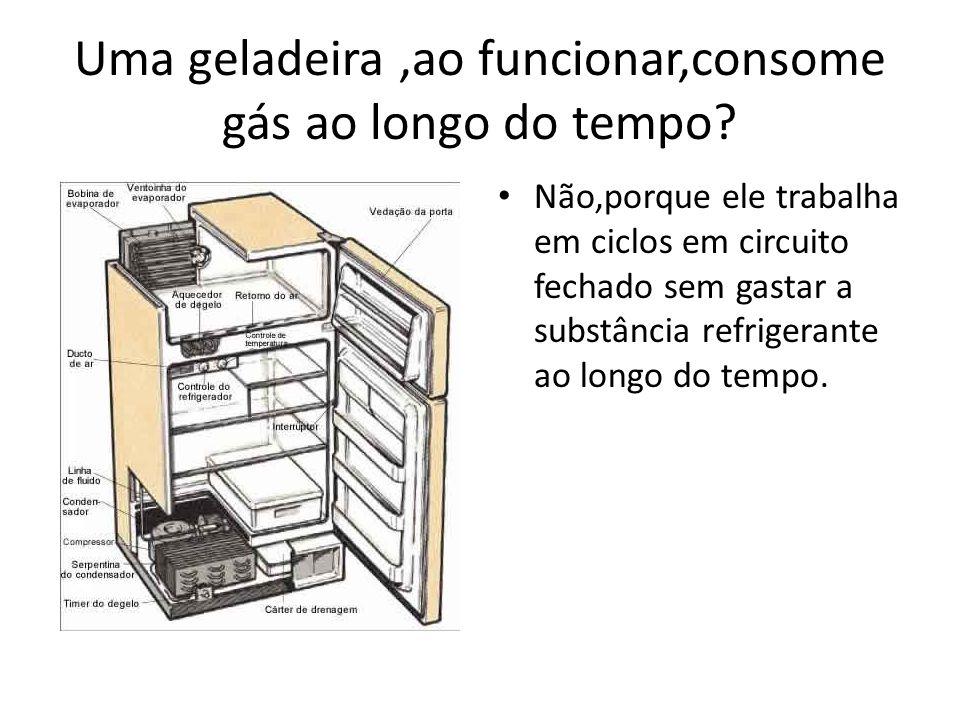 Uma geladeira ,ao funcionar,consome gás ao longo do tempo