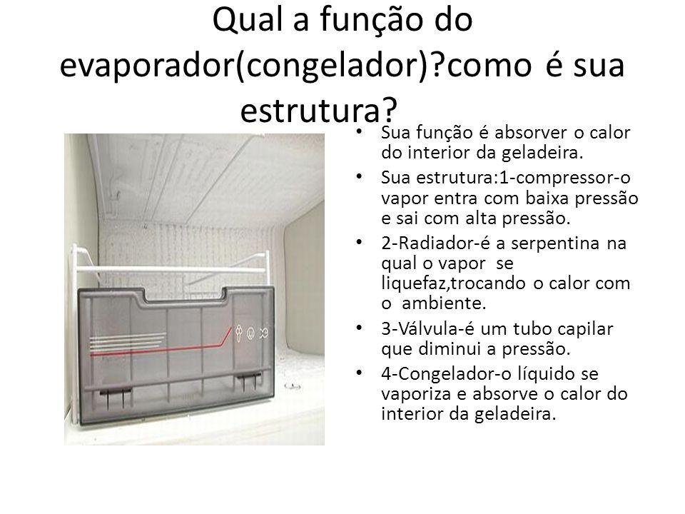 Qual a função do evaporador(congelador) como é sua estrutura