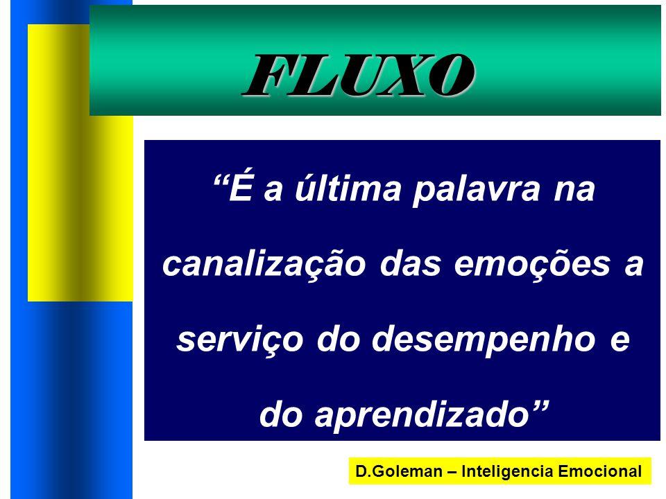 FLUXO É a última palavra na canalização das emoções a serviço do desempenho e do aprendizado D.Goleman – Inteligencia Emocional.