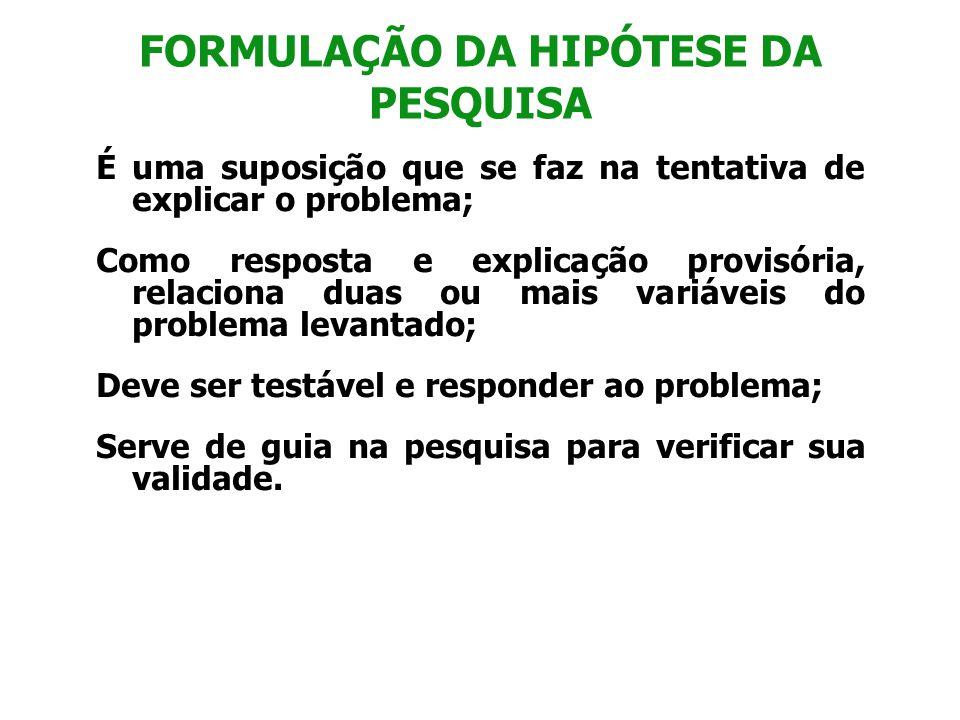 FORMULAÇÃO DA HIPÓTESE DA PESQUISA
