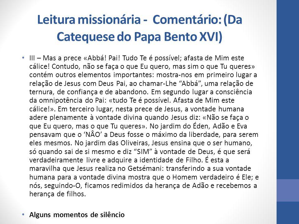 Leitura missionária - Comentário: (Da Catequese do Papa Bento XVI)
