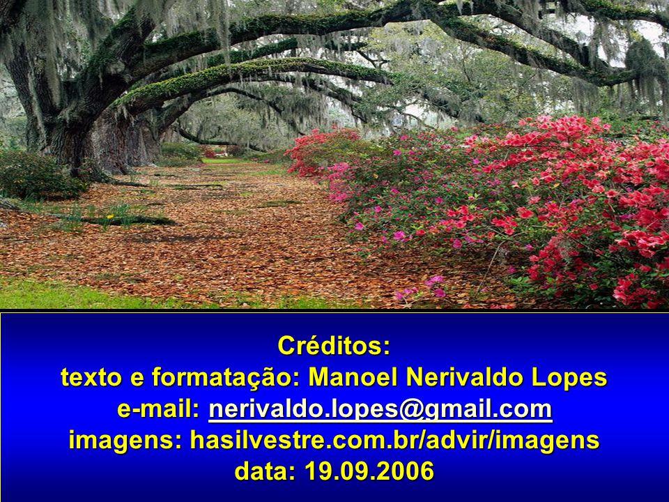 Créditos: texto e formatação: Manoel Nerivaldo Lopes e-mail: nerivaldo