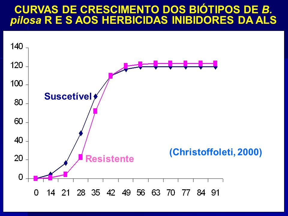 CURVAS DE CRESCIMENTO DOS BIÓTIPOS DE B