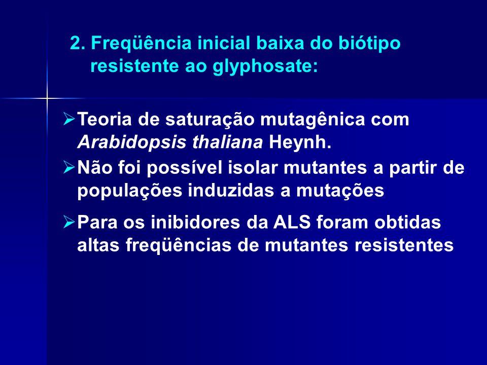 2. Freqüência inicial baixa do biótipo resistente ao glyphosate: