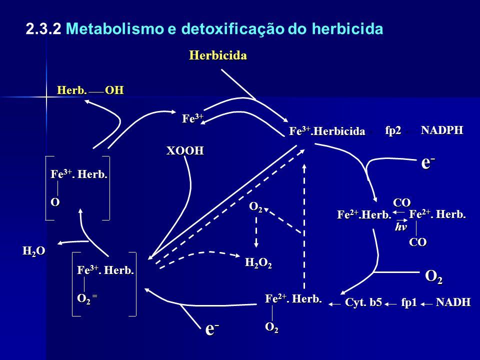 e- 2.3.2 Metabolismo e detoxificação do herbicida O2 Herbicida Herb.