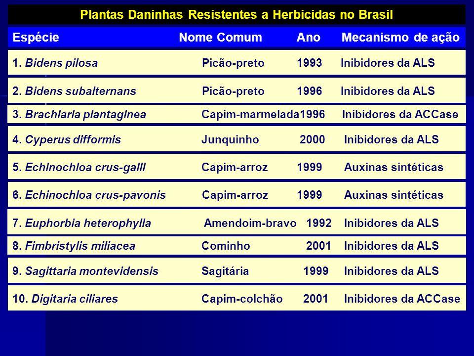 Plantas Daninhas Resistentes a Herbicidas no Brasil