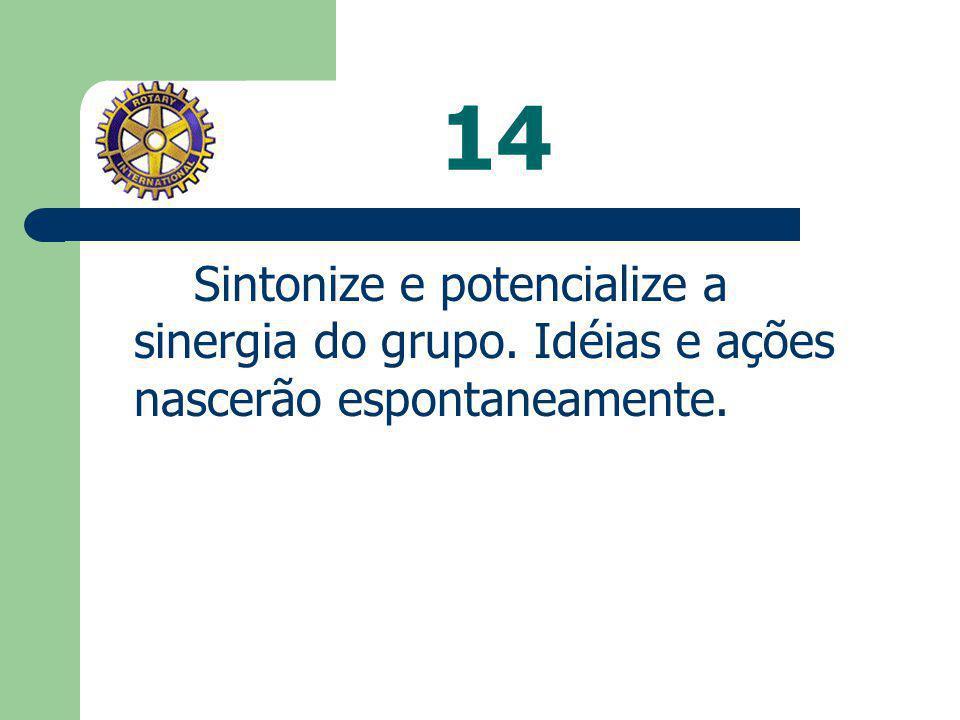 14 Sintonize e potencialize a sinergia do grupo. Idéias e ações nascerão espontaneamente.
