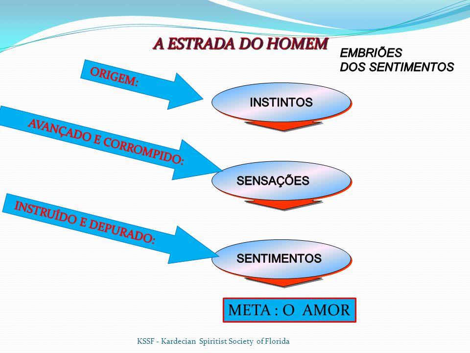 A ESTRADA DO HOMEM META : O AMOR EMBRIÕES DOS SENTIMENTOS ORIGEM:
