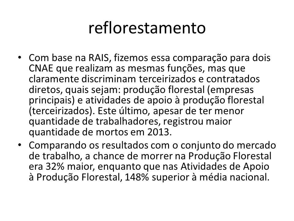 reflorestamento