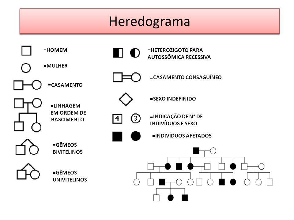 Heredograma EXERCÍCIOS =HOMEM =HETEROZIGOTO PARA AUTOSSÔMICA RECESSIVA