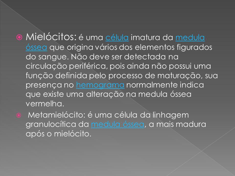 Mielócitos: é uma célula imatura da medula óssea que origina vários dos elementos figurados do sangue. Não deve ser detectada na circulação periférica, pois ainda não possui uma função definida pelo processo de maturação, sua presença no hemograma normalmente indica que existe uma alteração na medula óssea vermelha.