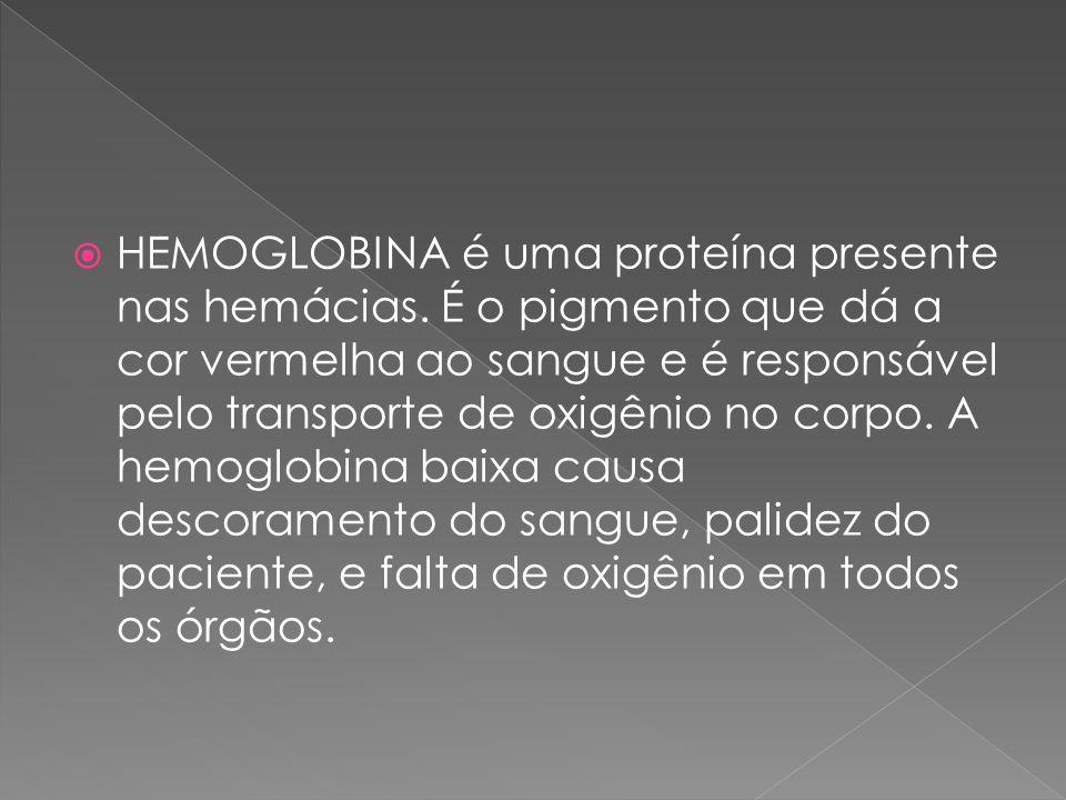 HEMOGLOBINA é uma proteína presente nas hemácias