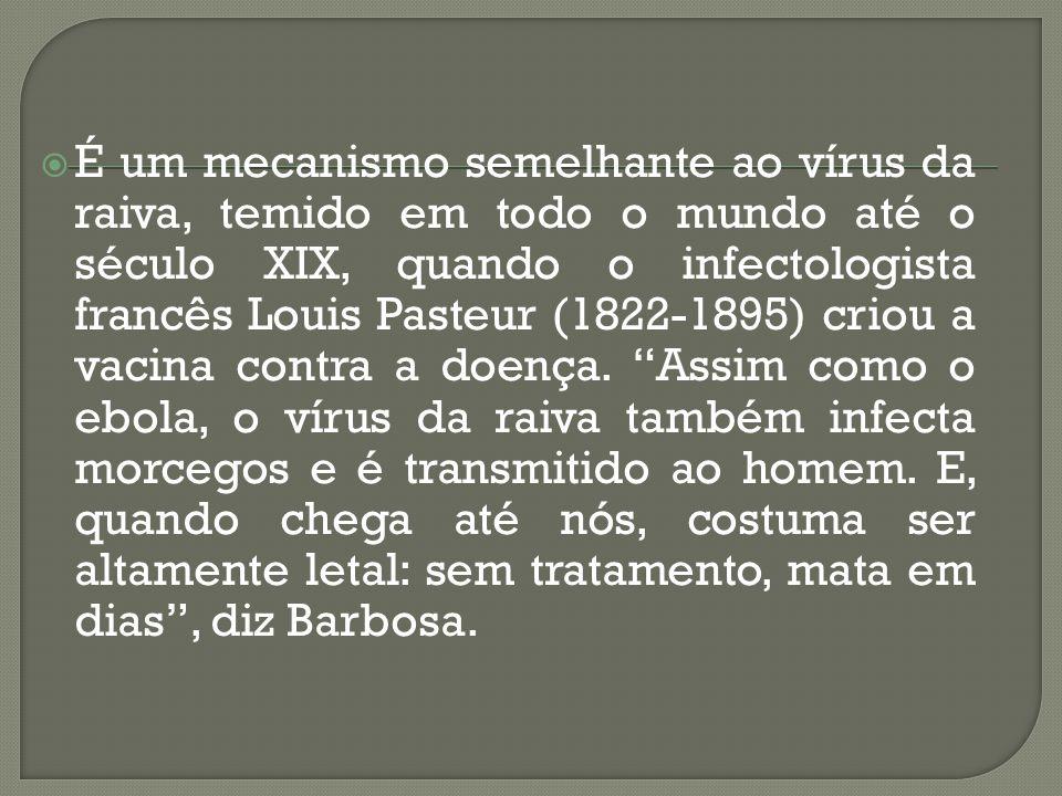 É um mecanismo semelhante ao vírus da raiva, temido em todo o mundo até o século XIX, quando o infectologista francês Louis Pasteur (1822-1895) criou a vacina contra a doença.