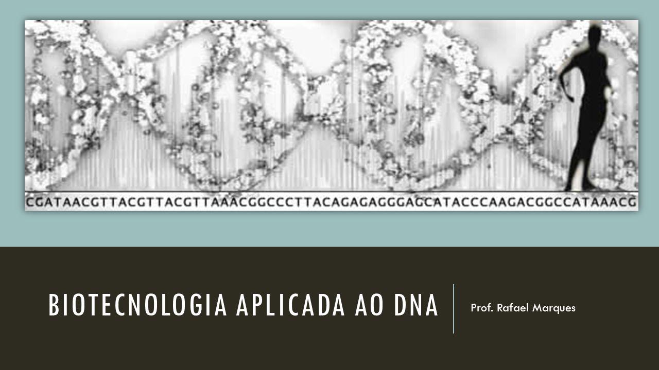 Biotecnologia Aplicada ao DNA