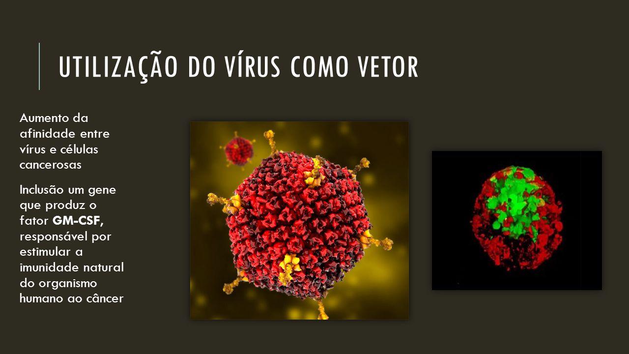 Utilização do vírus como vetor