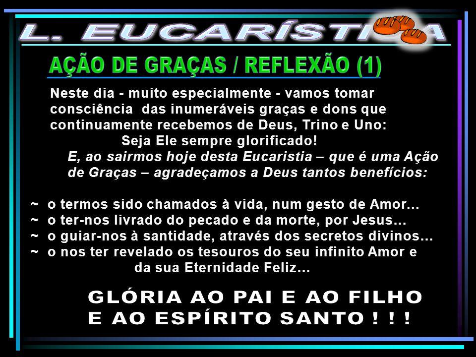AÇÃO DE GRAÇAS / REFLEXÃO (1)