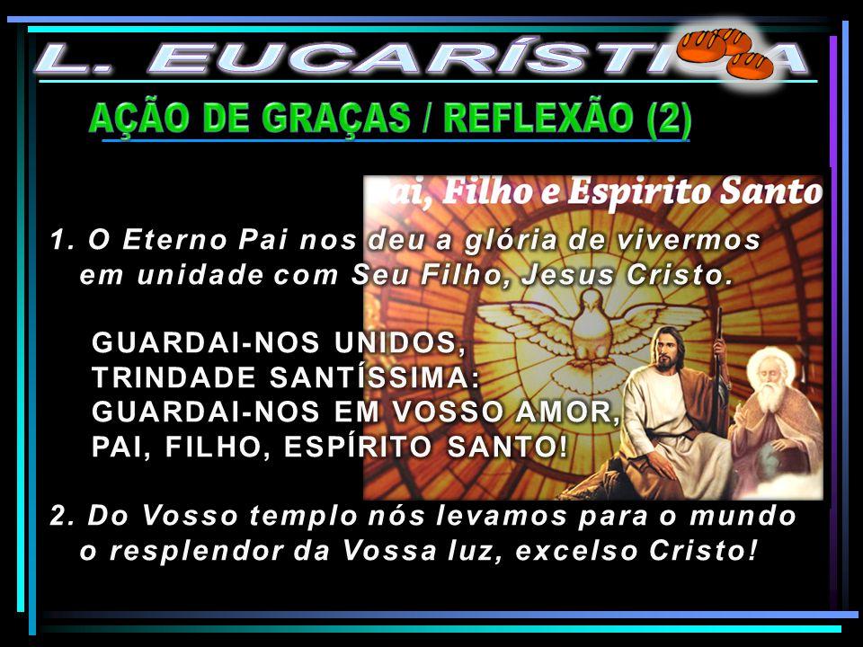 AÇÃO DE GRAÇAS / REFLEXÃO (2)