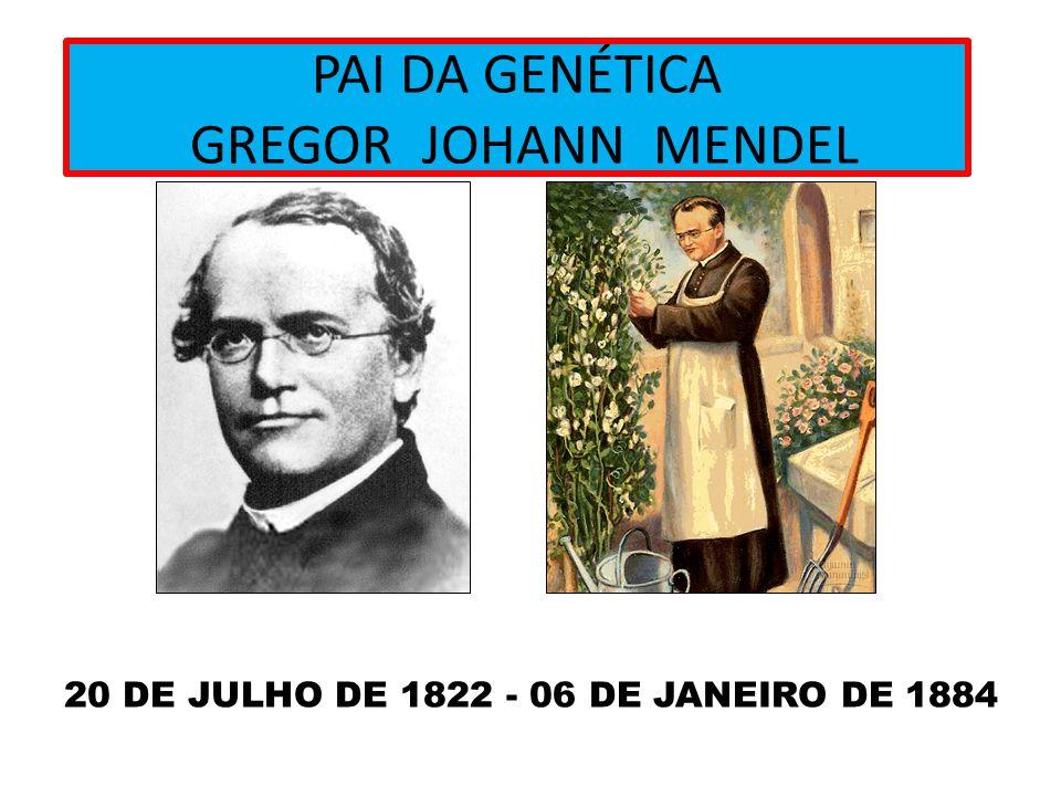 PAI DA GENÉTICA GREGOR JOHANN MENDEL