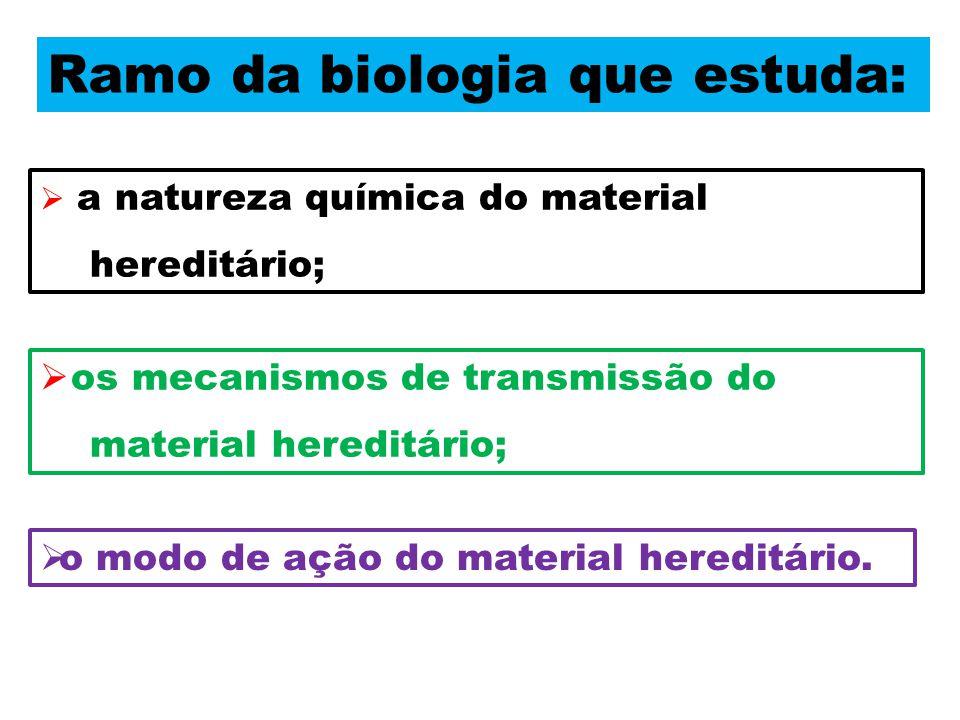 Ramo da biologia que estuda: