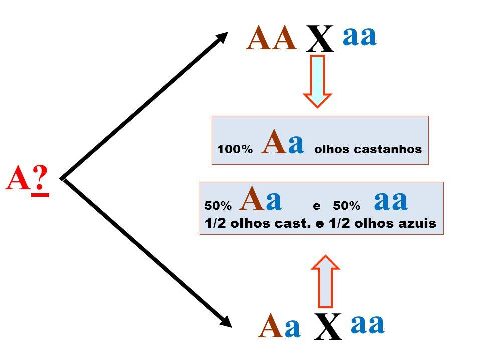 X X aa AA A aa Aa 1/2 olhos cast. e 1/2 olhos azuis