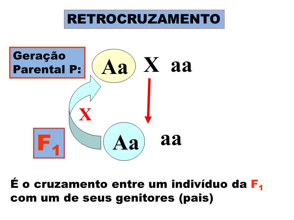 Aa X aa Aa Aa aa Aa F1 X RETROCRUZAMENTO Geração Parental P: