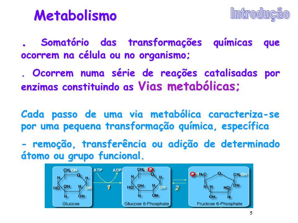 Metabolismo . Somatório das transformações químicas que ocorrem na célula ou no organismo;