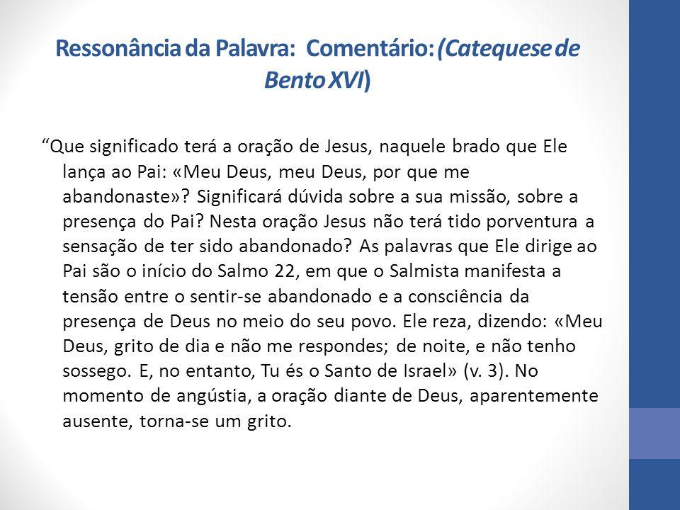 Ressonância da Palavra: Comentário: (Catequese de Bento XVI)
