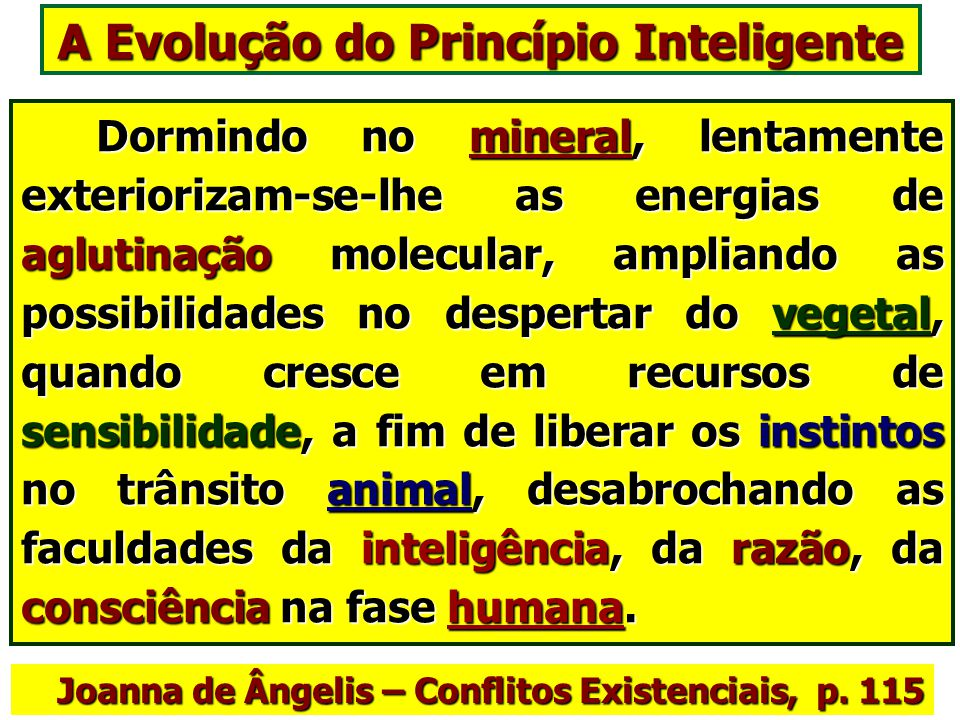 A Evolução do Princípio Inteligente