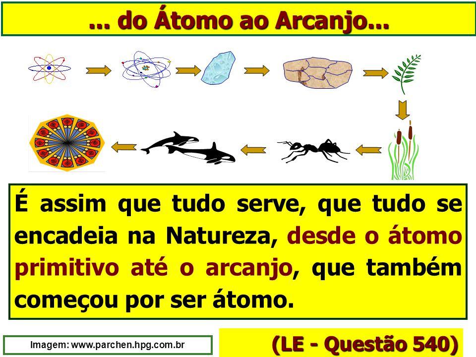 Imagem: www.parchen.hpg.com.br