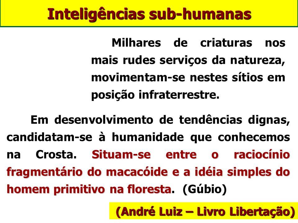 Inteligências sub-humanas
